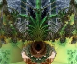 Fractal fern