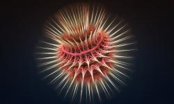 Bioluminiscent life form 2