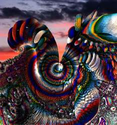 Fine Feathered Fractal