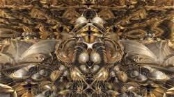 Golden Oxalys