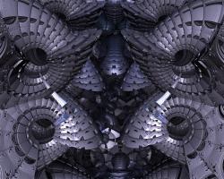 Armoured cephalopods